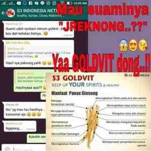 testimoni s3 goldvit asli